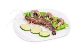 Crevettes fraîches délicieuses Photographie stock libre de droits
