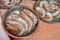 Crevettes fraîches de tigre Images libres de droits