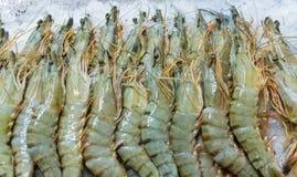 Crevettes fraîches sur la glace au marché 1 de produit alimentaire Photo libre de droits