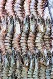 Crevettes fraîches sur la glace au marché 2 de produit alimentaire Images libres de droits