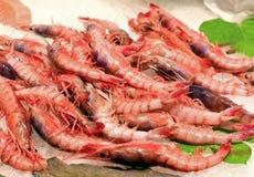 Crevettes fraîches sur le marché Photos libres de droits