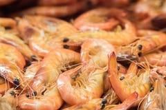 Crevettes fraîches au marché Image libre de droits