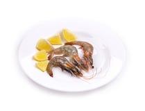Crevettes fraîches délicieuses Photos stock
