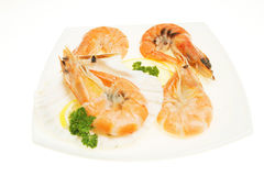 Crevettes on plate Stock Photos
