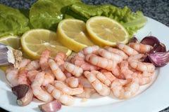 Crevettes roses épluchées de roi avec des citrons photo stock