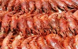 Crevettes roses Images libres de droits