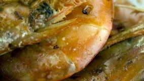 Crevettes roses argentines bio Photo stock