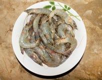 Crevettes roses crues de roi dans la cuvette sur la table de marbre photos stock