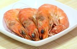 Crevettes roses cuites à la vapeur images libres de droits