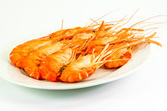 Crevettes roses cuites de tigre Images stock
