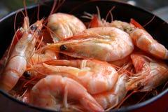 Crevettes roses cuites entières Photographie stock libre de droits