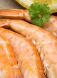 Crevettes roses de tigre Images libres de droits