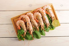 Crevettes roses de tigre avec des feuilles de Basil et des tranches de chaux Images stock