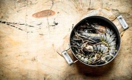 Crevettes roses de tigre dans une vieille casserole Images stock
