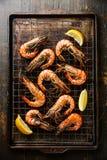 Crevettes roses de tigre sur la plaque de cuisson Photo stock