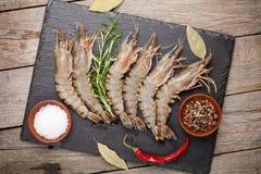 Crevettes roses et épices crues fraîches de tigre Photographie stock