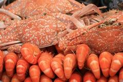 Crevettes roses et crabe cuits, Thaïlande. Photos libres de droits