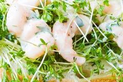 Crevettes roses et cresson Photographie stock libre de droits