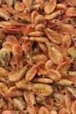 Crevettes roses et crevette Photo libre de droits