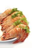 Crevettes roses et laitue de roi Photo stock