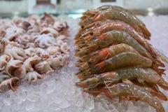 Crevettes, crevettes roses et poulpe frais de fruits de mer sur de contre- échanges d'un restaurant asiatique Images stock