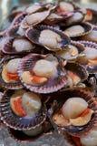 Crevettes, crevettes roses et poulpe frais de fruits de mer sur de contre- échanges d'un restaurant asiatique Photos stock