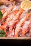 Crevettes roses fraîches de tigre sur la glace Photo libre de droits