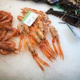 Crevettes roses fraîches sur une stalle de marché de fruits de mer Photographie stock
