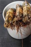 Crevettes roses géantes crues Image libre de droits