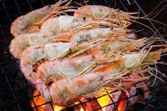 Crevettes roses grillées Images stock