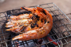 Crevettes roses grillées sur le gril Photos stock