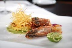 Crevettes royales cuites Image stock