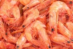 Crevettes sèches Photos libres de droits