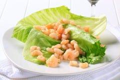 Crevettes sur des lames de laitue Photos stock