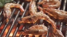 Crevettes sur le gril clips vidéos