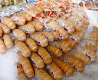 Crevettes sur le marché Photos libres de droits