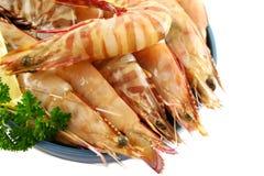 Crevettes vertes fraîches Photographie stock libre de droits