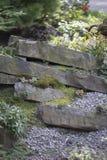Crevice Garden Stock Image