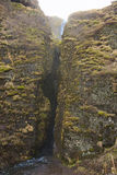 Crevice. Overgrown crevice at the golden circle in Iceland Stock Photos