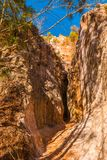 Crevice in wall of Providence Canyon, USA. Crevice in the red loamy wall of Providence Canyon in sunny day, USA Stock Photos