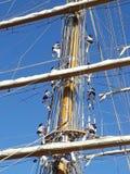 Crew climbing ropes Stock Image