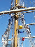 Crew climbing ropes. Frigate Libertad school Royalty Free Stock Photo
