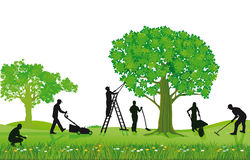 Crew of Landscapers Working Outdoors Stock Photo