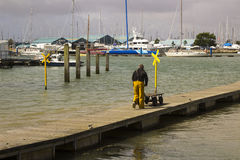A crew member pushes a buggy along a floating pontoon at the harbour at Warsash in Hampshire as he helps unload a trawler royalty free stock images