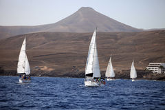 crewed四条充分地航行的游艇 免版税库存图片