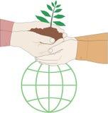 Crezca una planta, excepto la tierra stock de ilustración