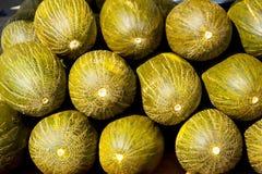 Crhistmas melon eller Santa Claus Piel de Sapo Royaltyfria Bilder