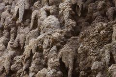 Criação artificial do jardim de Wallenstein da parede da estalactite, Praga Fotografia de Stock