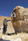 Criação de escalada Foto de Stock