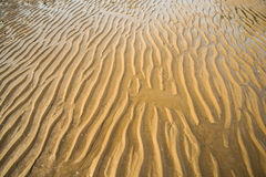 Cria naturalmente texturas Fotografia de Stock Royalty Free
